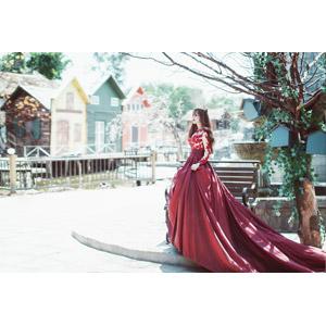 フリー写真, 人物, 女性, アジア人女性, 女性(00204), ベトナム人, ドレス, ティアラ, 王女(プリンセス), 横顔, 人と風景