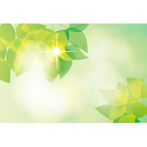 フリーイラスト, ベクター画像, EPS, 背景, 植物, 葉っぱ, 新緑, 木漏れ日, 緑色(グリーン)