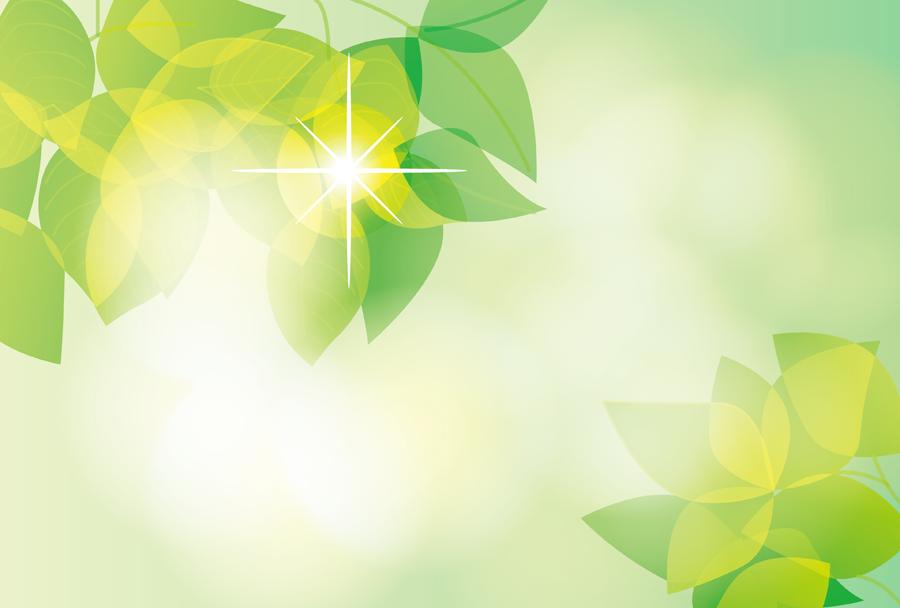 フリーイラスト 木漏れ日と新緑の葉っぱ
