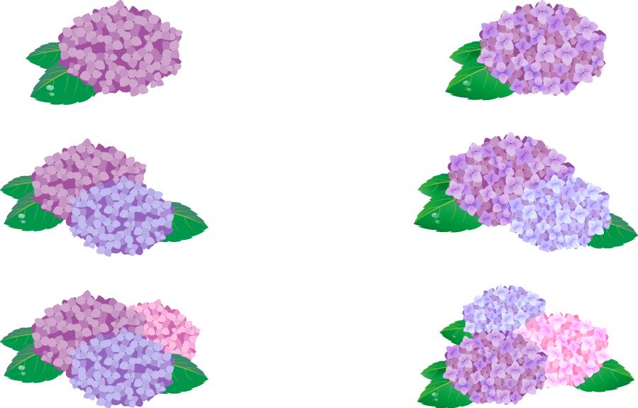 フリーイラスト 6種類の紫陽花のセット
