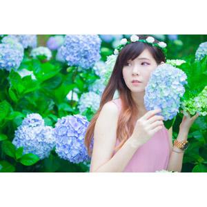 フリー写真, 人物, 女性, アジア人女性, DUDU(00216), 中国人, 人と花, 花, 花畑, 紫陽花(アジサイ), 花冠