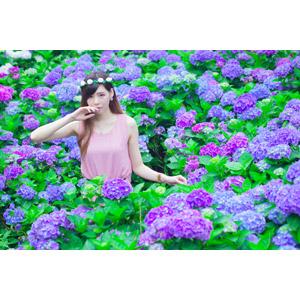 フリー写真, 人物, 女性, アジア人女性, DUDU(00216), 中国人, 人と花, 花, 花畑, 紫陽花(アジサイ), 花冠, 唇に指を当てる