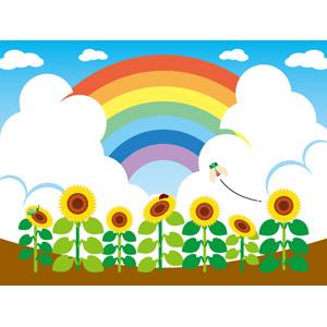 フリーイラスト, ベクター画像, EPS, 風景, 虹, 雲, 積乱雲(入道雲), 植物, 花, 向日葵(ヒマワリ), 黄色の花, 花畑, 夏