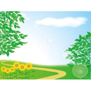 フリーイラスト, ベクター画像, AI, 風景, 青空, 葉っぱ, 新緑, 植物, 向日葵(ヒマワリ), 小道, レンズフレア, 夏
