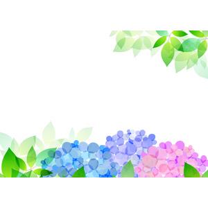 フリーイラスト, ベクター画像, AI, 背景, 梅雨, 6月, 植物, 葉っぱ, 新緑, 紫陽花(アジサイ)
