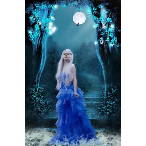 フリー写真, フォトレタッチ, 人物, 女性, 外国人女性, ドレス, 王女(プリンセス), 満月, 夜
