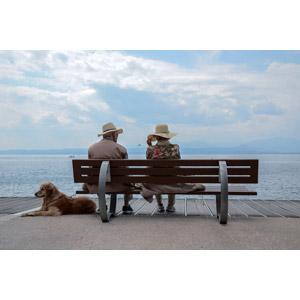 フリー写真, 人物, カップル, 夫婦, 老人, 座る(ベンチ), 湖, 人と動物, 動物, 哺乳類, 犬(イヌ), ゴールデン・レトリバー, 帽子, 麦わら帽子, 人と風景