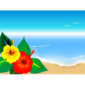フリーイラスト, ベクター画像, EPS, 背景, 植物, 花, ハイビスカス, 夏, 南国, 海, ビーチ(砂浜), リゾート, バカンス