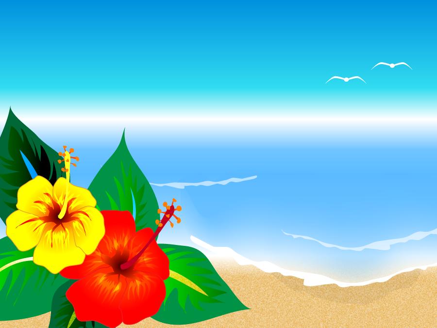 フリーイラスト ハイビスカスと南国の海
