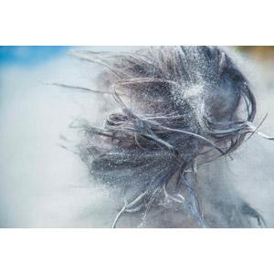フリー写真, 人体, 髪の毛, 粉(パウダー)