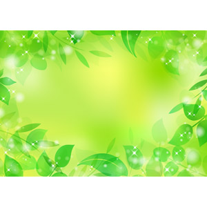 心と身体の健康に◎疲れたときは【緑色】がオススメ!