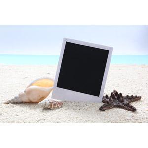 フリー写真, 背景, ポラロイド写真, ビーチ(砂浜), 海, 貝殻, ヒトデ