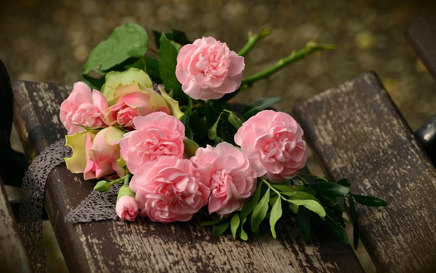 フリー写真 ピンク色のバラの花束