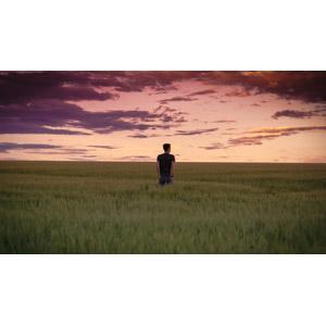 フリー写真, 人物, 男性, 後ろ姿, ポケットに手を入れる, 人と風景, 夕暮れ(夕方), 夕焼け, 草原, 牧草地