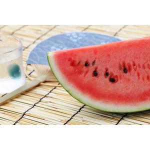フリー写真, 夏, 食べ物(食料), 果物(フルーツ), 西瓜(スイカ), 簾(すだれ)