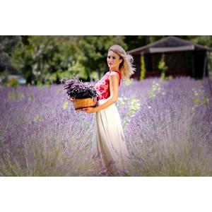 フリー写真, 人物, 女性, 外国人女性, 女性(00238), ルーマニア人, 金髪(ブロンド), 人と花, ラベンダー, 花畑