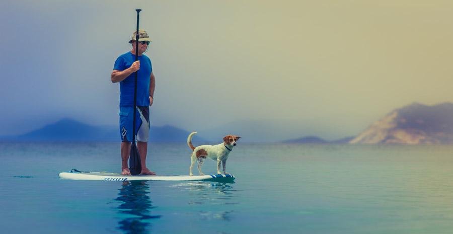 フリー写真 愛犬とスタンドアップパドル・サーフィンを楽しむ男性