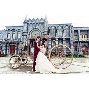 フリー写真, 人物, カップル, 花婿(新郎), 花嫁(新婦), 結婚式(ブライダル), 抱き合う, ウェディングドレス, 馬車, 人と風景, 二人