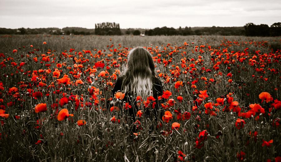フリー写真 ヒナゲシの花畑の中にいる女性の後ろ姿