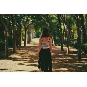 フリー写真, 人物, 女性, 外国人女性, 後ろ姿, 後ろ姿, 並木道, 樹木
