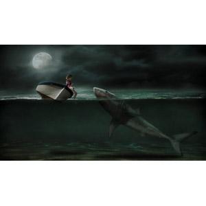 フリー写真, フォトレタッチ, 人と風景, 人と動物, 人と乗り物, 月, 夜, 海, 子供, 女の子, 動物, 猫(ネコ), 鮫(サメ), 水中, ホホジロザメ