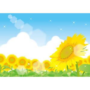 フリーイラスト, ベクター画像, AI, 風景, 植物, 花, 向日葵(ヒマワリ), 黄色の花, 花畑, 青空, 積乱雲(入道雲), 夏