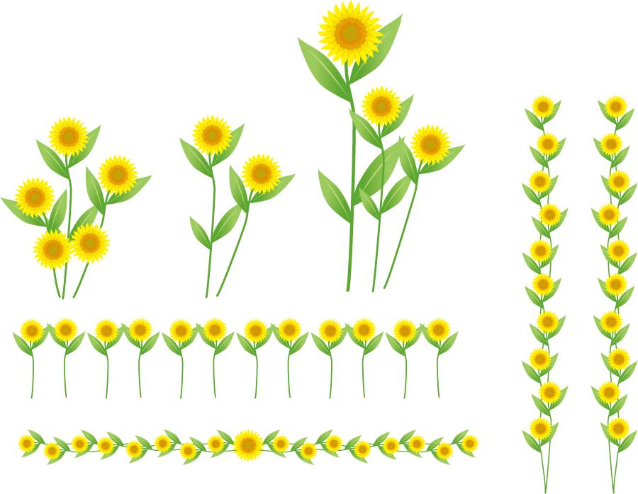 フリーイラスト ひまわりの花と飾り罫線のセット