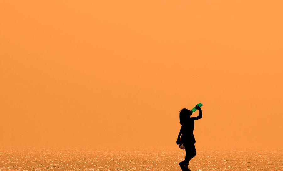 フリー写真 夕暮れの海と飲み物を飲んでいる女の子のシルエット