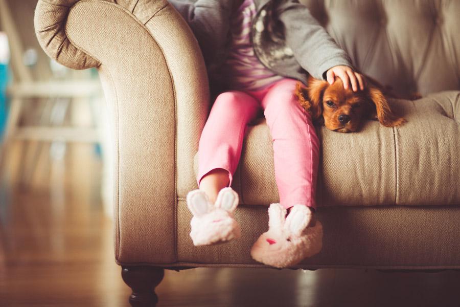 フリー写真 ソファーに座る女の子の側にいる犬