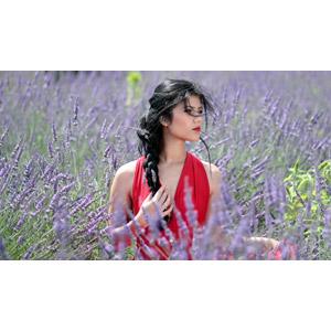 フリー写真, 人物, 女性, 外国人女性, 女性(00241), ルーマニア人, 人と花, 植物, 花, ラベンダー, 花畑, 紫色の花