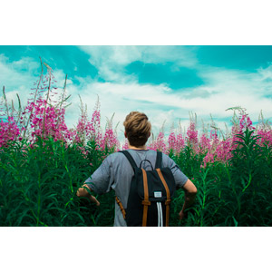 フリー写真, 人物, 男性, 外国人男性, 後ろ姿, 人と風景, 人と花, 草むら, 花, 青空, リュックサック(ナップサック)