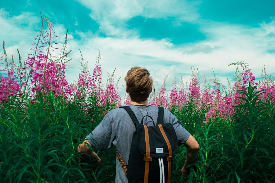 フリー写真 草花と外国人男性の後ろ姿