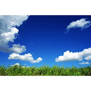 フリー写真, 風景, 自然, 草むら, 青空, 雲, 空