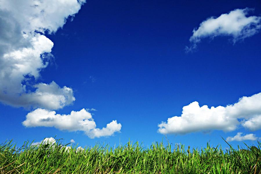 フリー写真 雲の浮かぶ青空と草むらの風景