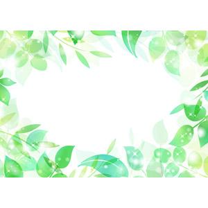 フリーイラスト, ベクター画像, AI, 背景, フレーム, 囲みフレーム, 植物, 葉っぱ, 新緑, 輝き