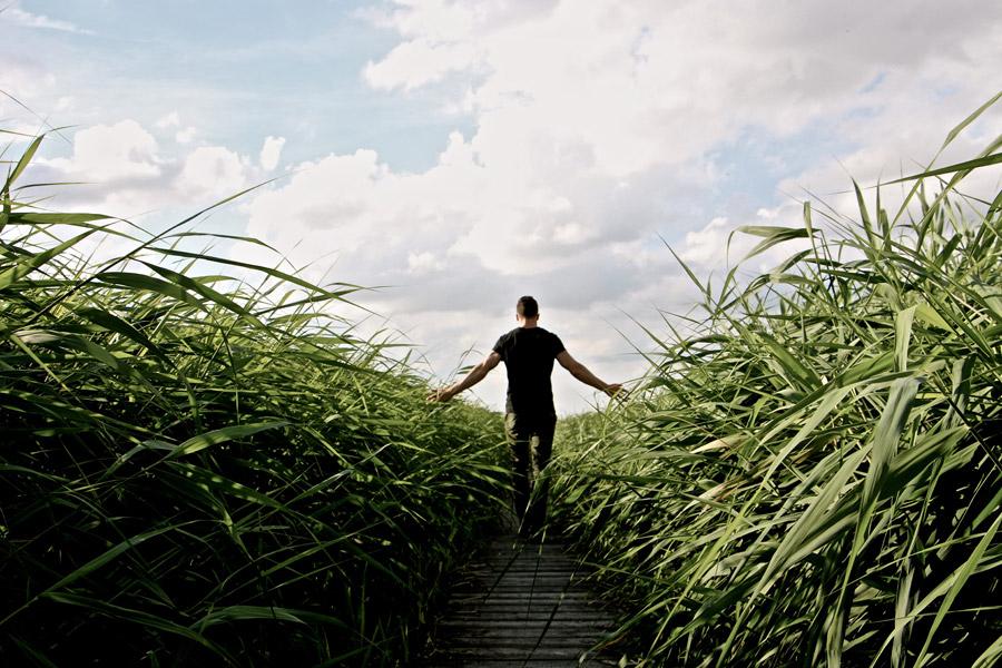 フリー写真 草の生い茂った小道を歩く男性の後ろ姿