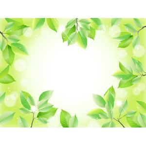 フリーイラスト, ベクター画像, AI, 背景, フレーム, ハートフレーム, ハート, 植物, 花, 葉っぱ, 新緑, 木漏れ日