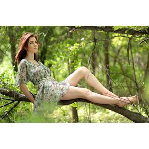 フリー写真, 人物, 女性, 外国人女性, 女性(00252), ルーマニア人, 座る(木), 見上げる(上を向く), ワンピース, 人と風景, 森林