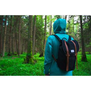フリー写真, 人物, 人と風景, フード, 後ろ姿, リュックサック(ナップサック), 森林, 樹木
