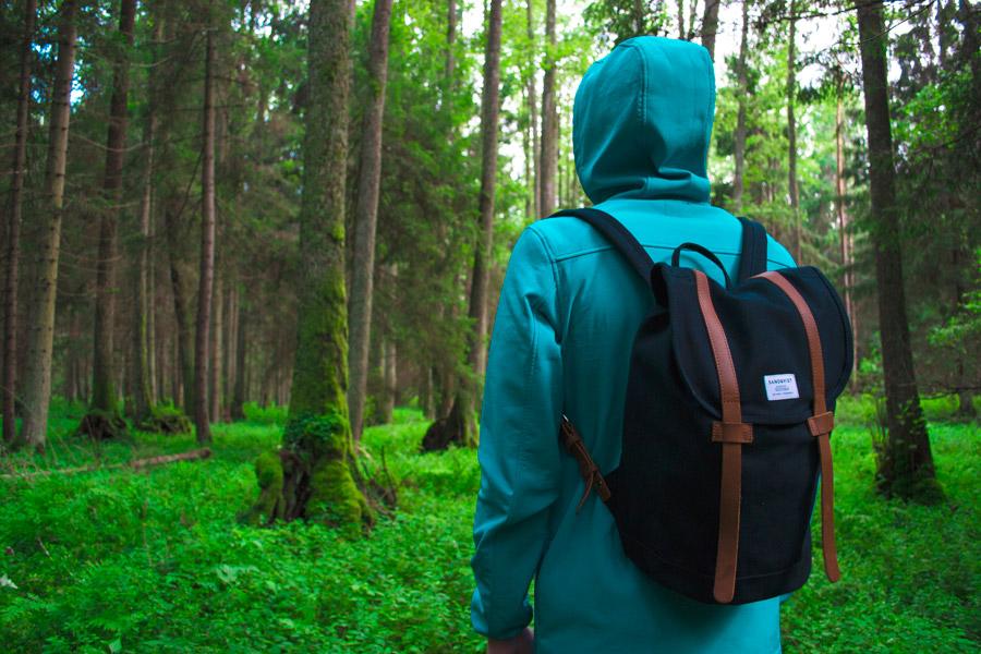 フリー写真 リュックを背負って森の中に入る人物