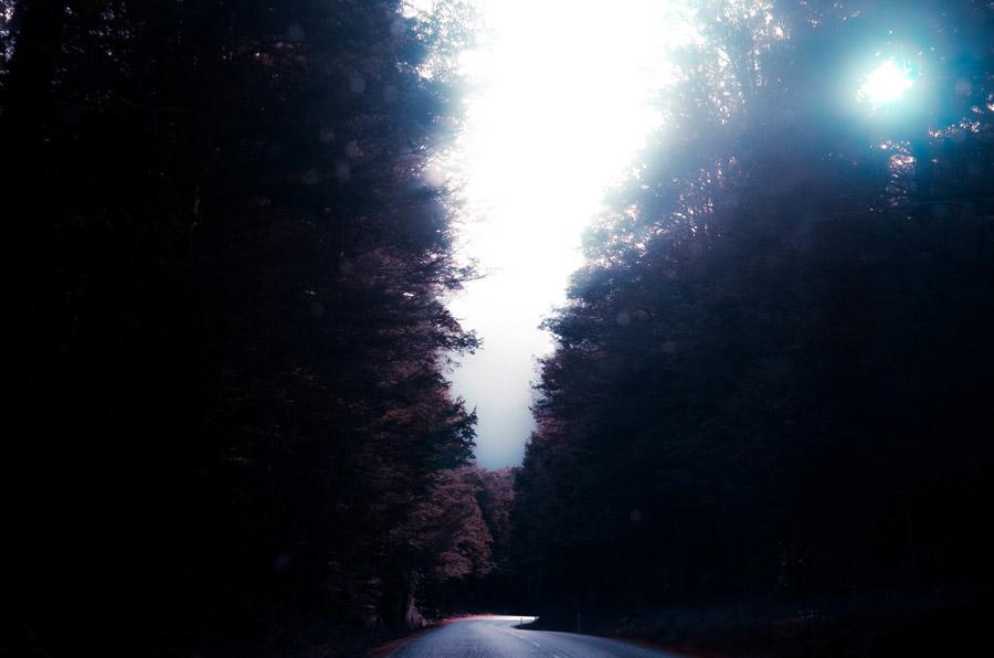 フリー写真 森を抜ける道路と太陽の光の風景