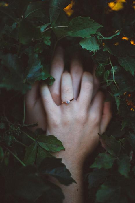 フリー写真 葉っぱと重ねた夫婦の手
