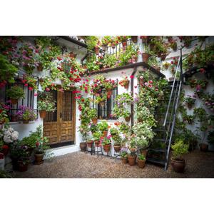 フリー写真, 風景, 建造物, 建築物, 住宅, 家(一軒家), 植物, 花, 園芸(ガーデニング), スペインの風景