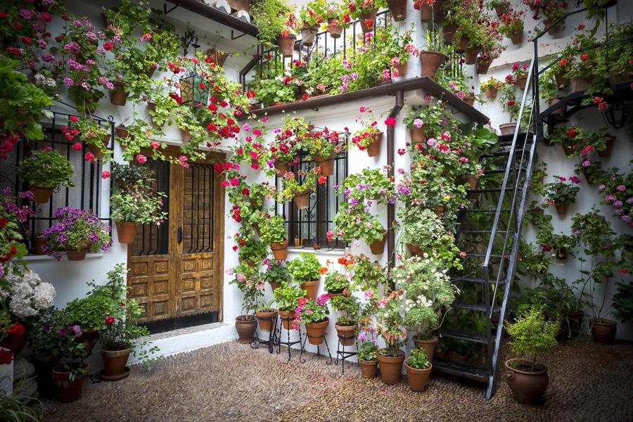 フリー写真 花に囲まれた家の風景
