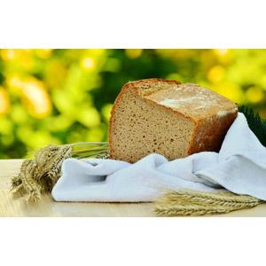 フリー写真, 食べ物(食料), パン, 食パン, 作物, 穀物, 麦(ムギ), 大麦(オオムギ)