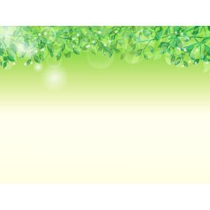 フリーイラスト, ベクター画像, AI, 背景, 植物, 葉っぱ, 新緑, 輝き