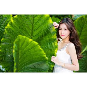 フリー写真, 人物, 女性, アジア人女性, 楚珊(00053), 中国人, 植物, 葉っぱ