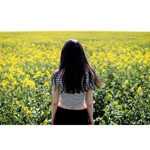 フリー写真, 人物, 女性, 後ろ姿, 人と風景, 人と花, 植物, 花, 菜の花(アブラナ), 黄色の花, 春