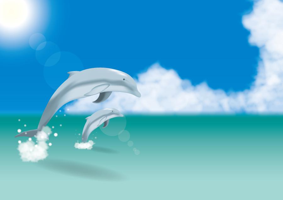 フリーイラスト 夏の海とジャンプする二匹のイルカ