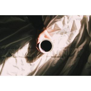 フリー写真, 人体, 手, 飲み物(飲料), コーヒー(珈琲), 朝